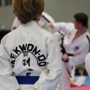 Stage de Tae Kwon Do ITF à l INSEP