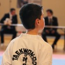 Tournoi de Tae Kwon Do ITF à Thonon